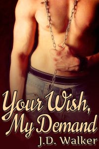 Your Wish My Demand cover