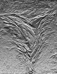 blume_6_(updated) bas relief